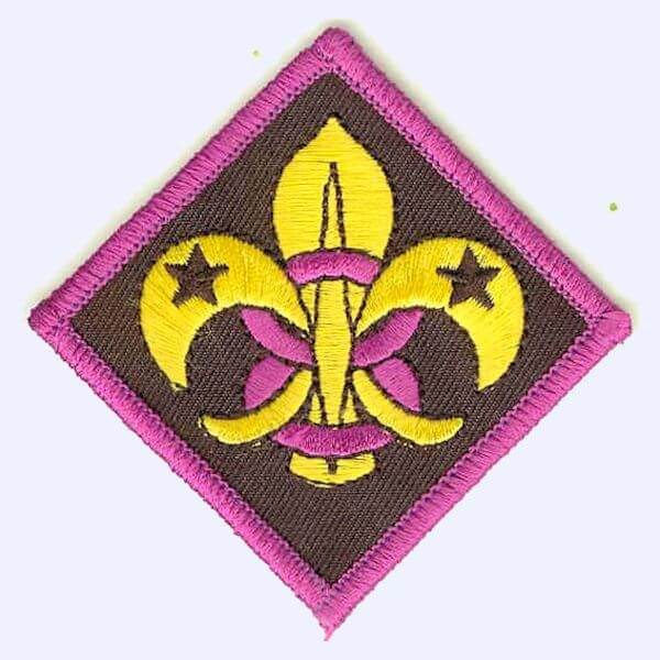 8th Ilkeston Scout Group badge